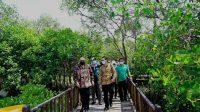 Mangrove Surabaya Hingga Eks Dolly Buat Delegasi Internasional Kagum