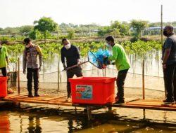 Wali Kota Surabaya Panen Perdana 1,25 Ton Bandeng