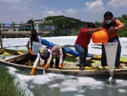 Ecoton Dorong Pemkot Segera Melakukan Pengerukan Sedimen di Tambak Wedi