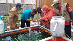 Lurah Medokan Ayu Kunjungi Pembibitan Ikan Hias, 5 Manfaat Memelihara Ikan Hias