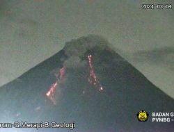 Gunung Merapi 13 Kali Luncurkan Guguran Lava Pijar