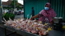 Harga Daging Ayam di Surabaya Mulai Naik, Bahan Pokok Lain Relatif Stabil